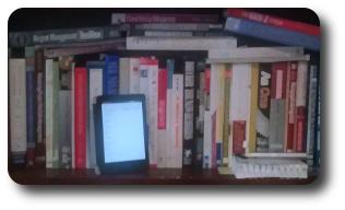 Toby Elwin, Kindle, books, bookshelf, ereader