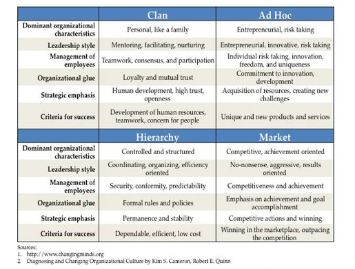 Competing Values Framework, Toby Elwin, Kim Cameron, culture, strategy, profile