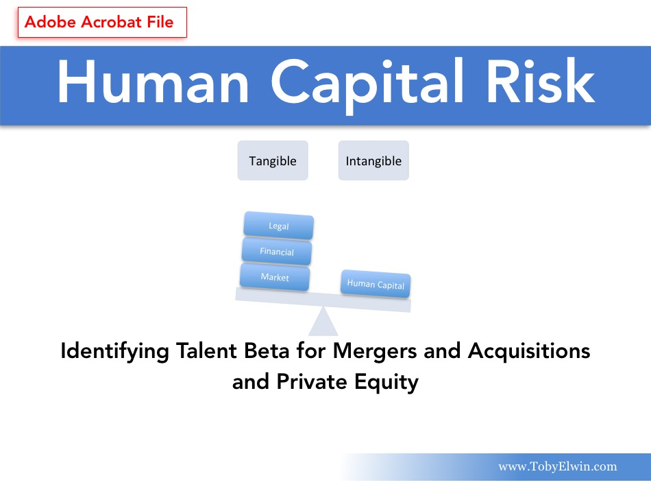 Human Capital, Risk Management, Adobe, pdf, presentation, Toby Elwin