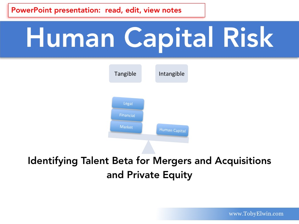Human Capital, Risk Management, presentation, Toby Elwin